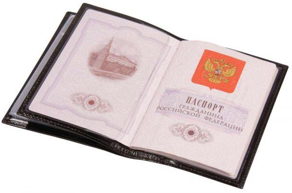 Обложка для автодокументов и паспорта Omnia Mea