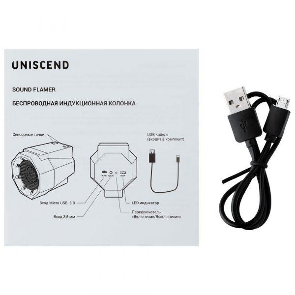 Беспроводная индукционная колонка Uniscend Flamer